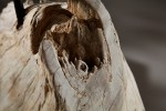 Stehleuchte aus Treibholz Rousilique beige